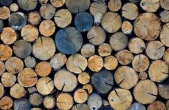 Registros tajados de la leña Fondo de madera deforestation foto de archivo