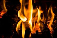 Registros y carbón en el fuego Imagen de archivo libre de regalías