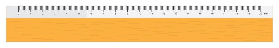 Regla ilustración del vector