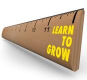 Regla - aprenda crecer Imagen de archivo