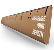 Regla - mida su salud Imágenes de archivo libres de regalías