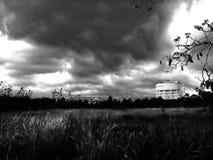 regn arkivfoto