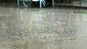 regn stock video