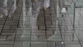 Regn-blötta kullersten av den romerska gatan arkivfilmer