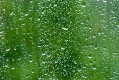 regn för 4 droppar Arkivfoto