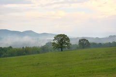 Regn för vår för berglandskap kort efter Royaltyfri Bild