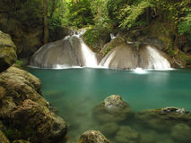 Regn Forest Waterfall Royaltyfria Foton