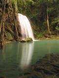 Regn Forest Waterfall Royaltyfri Fotografi