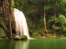 Regn Forest Waterfall Royaltyfria Bilder