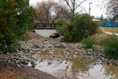 Regn i centrala Kalifornien royaltyfri fotografi