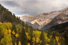 Regn i Colorado berg Royaltyfri Foto