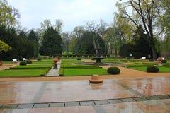 Regn i parkera Arkivfoto