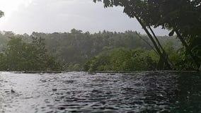 Regn i skogen, Ubud, Bali stock video