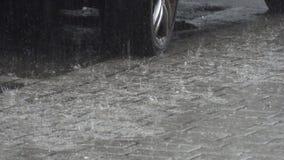 Regn med hagel på gatan lager videofilmer