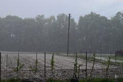 Regn och storm Royaltyfri Fotografi