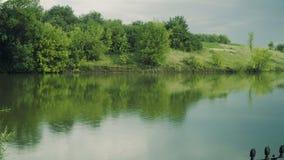 Regn på dammet stock video