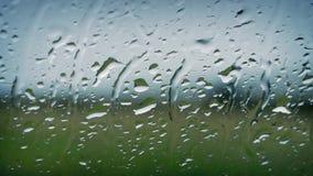 Regn på fönstret som ut ser på naturen stock video