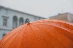 Regn på paraplyet Royaltyfri Fotografi
