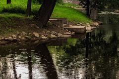 Regn på parkera Arkivfoton