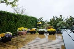 Regn på terrassen huset arkivbilder