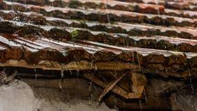 Regn som faller på taktegelplattor Arkivbilder
