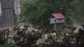 Regn som hårt faller i, parkerar på litet trähus arkivfilmer