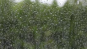 Regn tappar på fönsterexponeringsglas, regnig höstdag lager videofilmer