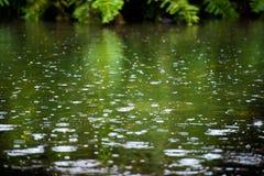 Regn tappar sorl i en pöl med reflexion för blå himmel royaltyfri bild