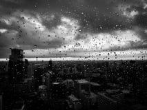 Regn tappar svartvitt fotografering för bildbyråer