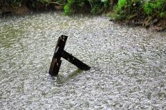 Regna droppe i vattnet med tappning som är trä i kanal, som naturen Arkivfoton