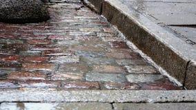 Regna plattering på kullersten i kant av trottoar arkivfilmer