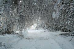 regna snöslask Arkivfoton