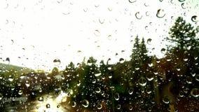 Regna tappar på ett fönster Royaltyfri Bild