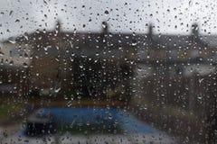 Regna tappar på ett fönster Arkivfoto