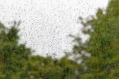 Regna tappar på fönster royaltyfria bilder