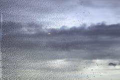 Regna/vattendroppe av regn på exponeringsglas med blured backgrou för blå himmel royaltyfria bilder