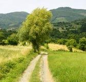 Regnano, Toscane (Italie) Photos libres de droits