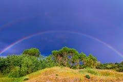 Regnbåge över de gröna träden Arkivfoto