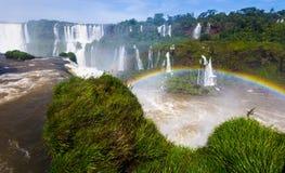 Regnbåge över den Cataratas del Iguazu vattenfallet, Brasilien Royaltyfri Fotografi
