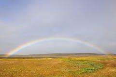 Regnbåge över grässlättar Arkivfoto