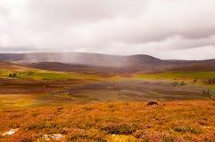 Regnbåge över högländerna Fotografering för Bildbyråer