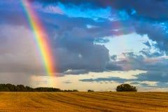 Regnbåge över landskapet för vetefält Arkivbilder