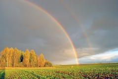 regnbåge Royaltyfri Foto