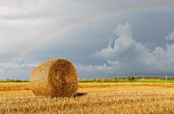 regnbåge Arkivfoton