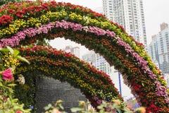 Regnb?ge av blomman i stad arkivbilder