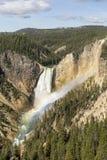 Regnbåge för Yellowstone Uppernedgångar och blå himmel Royaltyfri Bild