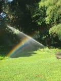 Regnbåge från vattnet som bevattnar gräsmattan royaltyfri fotografi