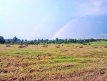 Regnbåge i fältet efter hällregn arkivbild