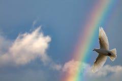 Regnbåge i skyen arkivbilder