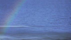 Regnbåge i springbrunn stock video